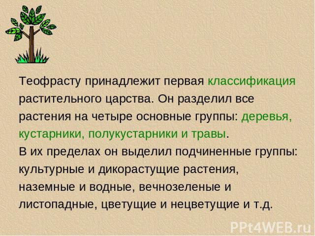 Теофрасту принадлежит первая классификация растительного царства. Он разделил все растения на четыре основные группы: деревья, кустарники, полукустарники и травы. В их пределах он выделил подчиненные группы: культурные и дикорастущие растения, назем…