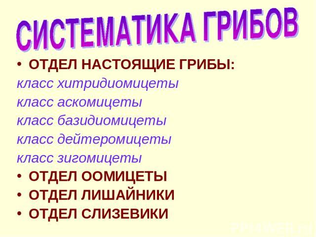 ОТДЕЛ НАСТОЯЩИЕ ГРИБЫ: класс хитридиомицеты класс аскомицеты класс базидиомицеты класс дейтеромицеты класс зигомицеты ОТДЕЛ ООМИЦЕТЫ ОТДЕЛ ЛИШАЙНИКИ ОТДЕЛ СЛИЗЕВИКИ