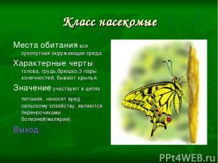 Класс насекомые Места обитания вся сухопутная окружающая среда. Характерные черт