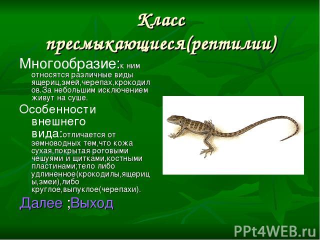 Класс пресмыкающиеся(рептилии) Многообразие:к ним относятся различные виды ящериц,змей,черепах,крокодилов.За небольшим исключением живут на суше. Особенности внешнего вида:отличается от земноводных тем,что кожа сухая,покрытая роговыми чешуями и щитк…
