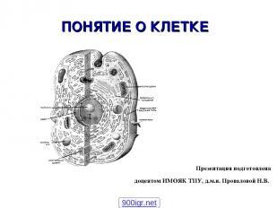 ПОНЯТИЕ О КЛЕТКЕ Презентация подготовлена доцентом ИМОЯК ТПУ, д.м.н. Проваловой