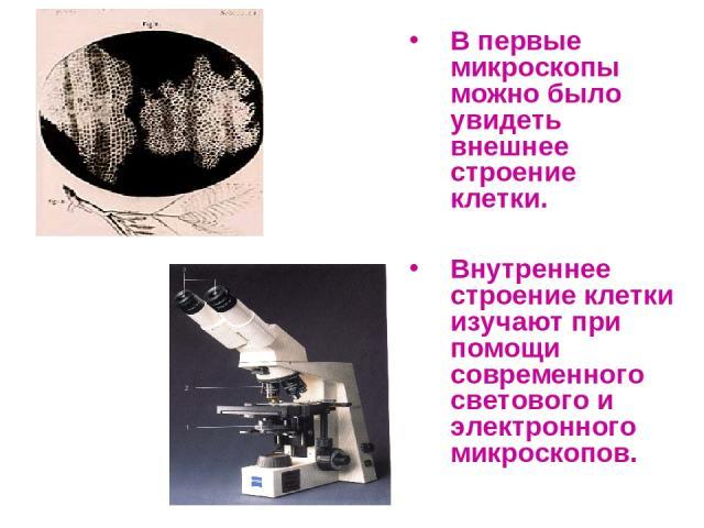 В первые микроскопы можно было увидеть внешнее строение клетки. Внутреннее строение клетки изучают при помощи современного светового и электронного микроскопов.
