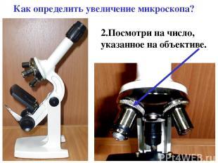 Как определить увеличение микроскопа? 2.Посмотри на число, указанное на объектив
