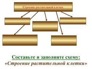 Строение растительной клетки Составьте и заполните схему: «Строение растительной