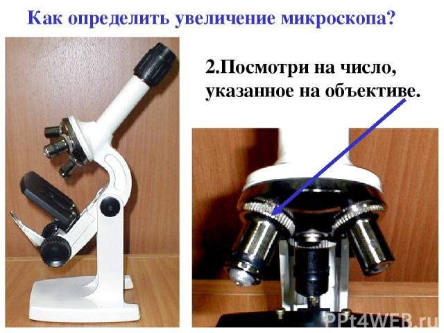 Как определить увеличение микроскопа? 2.Посмотри на число, указанное на объективе.