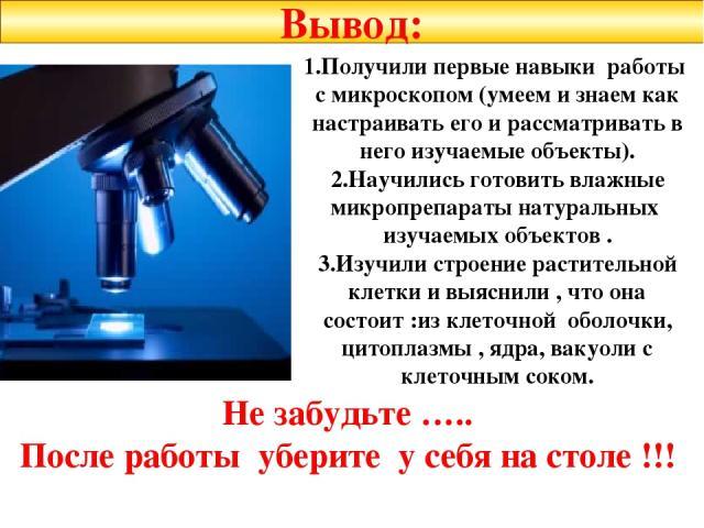 1.Получили первые навыки работы с микроскопом (умеем и знаем как настраивать его и рассматривать в него изучаемые объекты). 2.Научились готовить влажные микропрепараты натуральных изучаемых объектов . 3.Изучили строение растительной клетки и выяснил…