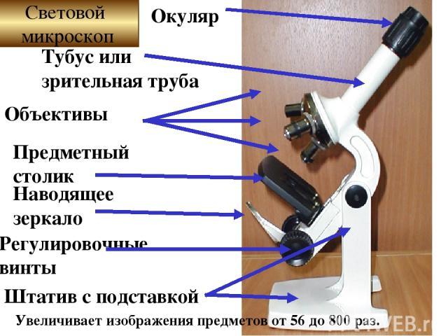 Увеличивает изображения предметов от 56 до 800 раз. Окуляр Тубус или зрительная труба Объективы Предметный столик Наводящее зеркало Регулировочные винты Штатив с подставкой Световой микроскоп