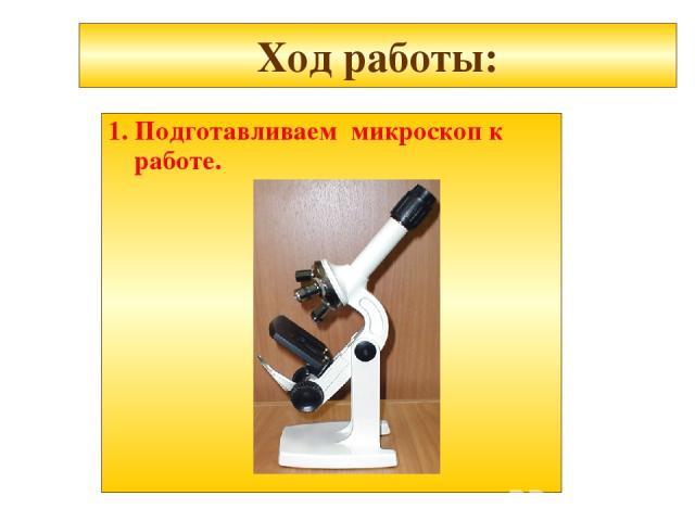 Ход работы: 1. Подготавливаем микроскоп к работе.