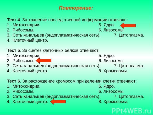 Тест 4. За хранение наследственной информации отвечают: Митохондрии. 5. Ядро. Рибосомы. 6. Лизосомы. Сеть канальцев (эндоплазматическая сеть). 7. Цитоплазма. Клеточный центр. Тест 5. За синтез клеточных белков отвечают: Митохондрии. 5. Ядро. Рибосом…
