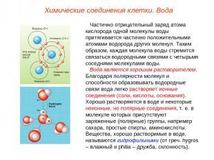 Частично отрицательный заряд атома кислорода одной молекулы воды притягивается ч