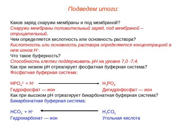 Каков заряд снаружи мембраны и под мембраной? Снаружи мембраны положительный заряд, под мембраной – отрицательный. Чем определяется кислотность или основность раствора? Кислотность или основность раствора определяется концентрацией в нем ионов Н+. Ч…