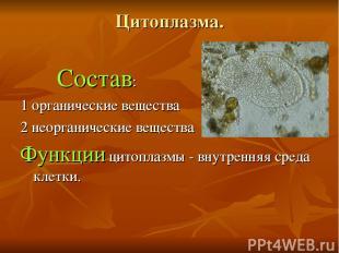 Цитоплазма. Состав: 1 органические вещества 2 неорганические вещества Функции ци