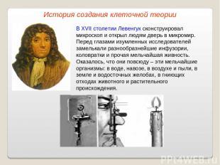 В XVII столетии Левенгук сконструировал микроскоп и открыл людям дверь в микроми