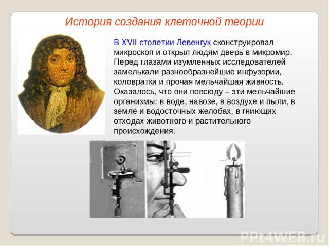 В XVII столетии Левенгук сконструировал микроскоп и открыл людям дверь в микромир. Перед глазами изумленных исследователей замелькали разнообразнейшие инфузории, коловратки и прочая мельчайшая живность. Оказалось, что они повсюду – эти мельчайшие ор…