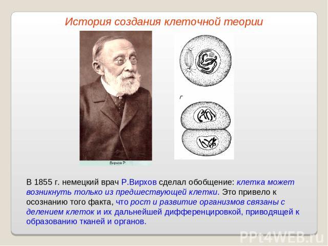 В 1855 г. немецкий врач Р.Вирхов сделал обобщение: клетка может возникнуть только из предшествующей клетки. Это привело к осознанию того факта, что рост и развитие организмов связаны с делением клеток и их дальнейшей дифференцировкой, приводящей к о…