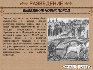Совсем другим в те времена было коневодство в лесной полосе Восточной Европы. Зд