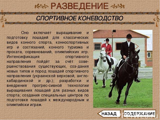 Оно включает выращивание и подготовку лошадей для классических видов конного спорта, конноспортивных игр и состязаний, конного туризма и проката, соревнований, олимпийских игр. Интенсификация спортивного направления пойдёт за счёт сове-ршенствования…