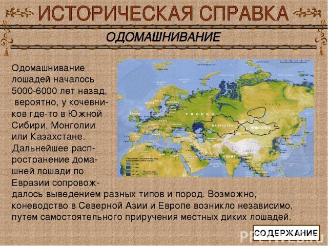Одомашнивание лошадей началось 5000-6000 лет назад, вероятно, у кочевни- ков где-то в Южной Сибири, Монголии или Казахстане. Дальнейшее расп- ространение дома- шней лошади по Евразии сопровож- далось выведением разных типов и пород. Возможно, конево…