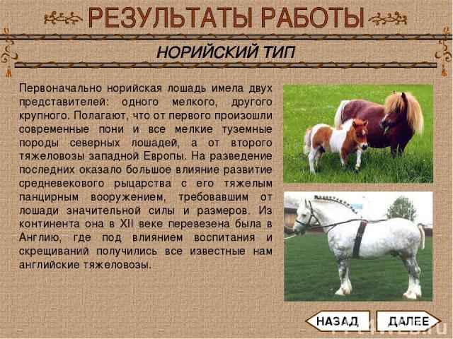 Первоначально норийская лошадь имела двух представителей: одного мелкого, другого крупного. Полагают, что от первого произошли современные пони и все мелкие туземные породы северных лошадей, а от второго тяжеловозы западной Европы. На разведение пос…
