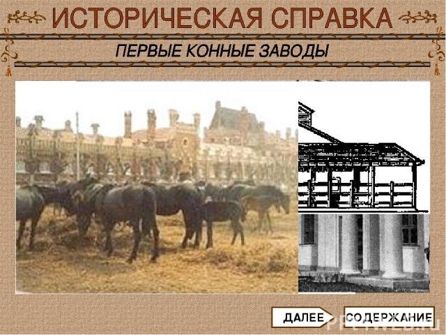 Выведением различных пород лошадей занимаются в специальных заведениях - так называемых конных заводах. К XI - XII векам относят становление коннозаводства в Западной Европе. В средневековой Европе появились первые специальные хозяйства по разведени…