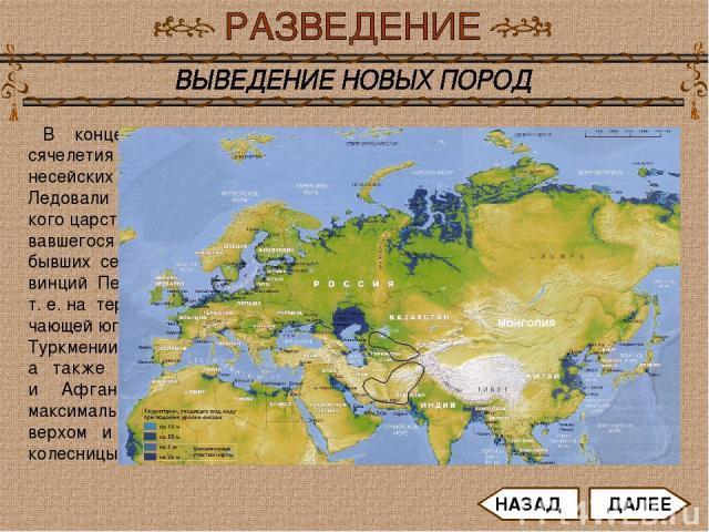 В конце первого ты- сячелетия до н. э. славу несейских лошадей унас- Ледовали кони Парфянс- кого царства, образо- вавшегося на месте бывших северных про- винций Персии и Бактрии, т. е. на территории, вклю- чающей юг современных Туркмении и Узбекиста…