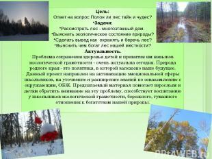 Цель: Ответ на вопрос Полон ли лес тайн и чудес? Задачи: Рассмотреть лес - много