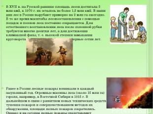 В XVII в. на Русской равнине площадь лесов достигала 5 млн км2, к 1970 г. их ост