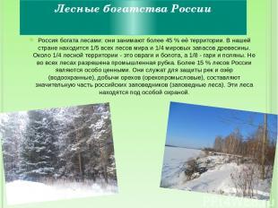 Лесные богатства России Россия богата лесами: они занимают более 45 % её террито
