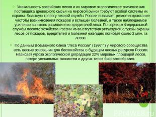 Уникальность российских лесов и их мировое экологическое значение как поставщика