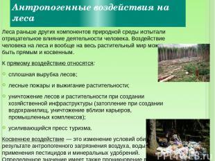 Антропогенные воздействия на леса Леса раньше других компонентов природной среды