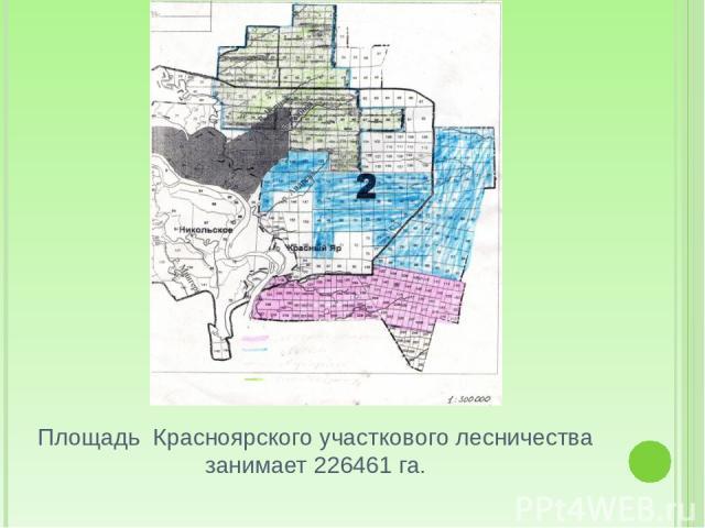Площадь Красноярского участкового лесничества занимает 226461 га.
