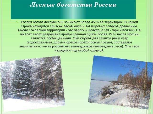 Лесные богатства России Россия богата лесами: они занимают более 45 % её территории. В нашей стране находится 1/5 всех лесов мира и 1/4 мировых запасов древесины. Около 1/4 лесной территории - это овраги и болота, а 1/8 - гари и поляны. Не во всех л…