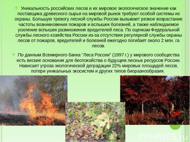 Уникальность российских лесов и их мировое экологическое значение как поставщика древесного сырья на мировой рынок требуют особой системы их охраны. Большую тревогу лесной службы России вызывает резкое возрастание частоты возникновения пожаров и всп…