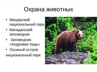Охрана животных Мещёрский национальный парк Магаданский заповедник Заповедник «К