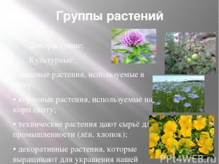 Группы растений Дикорастущие; Культурные: • пищевые растения, используемые в пищ