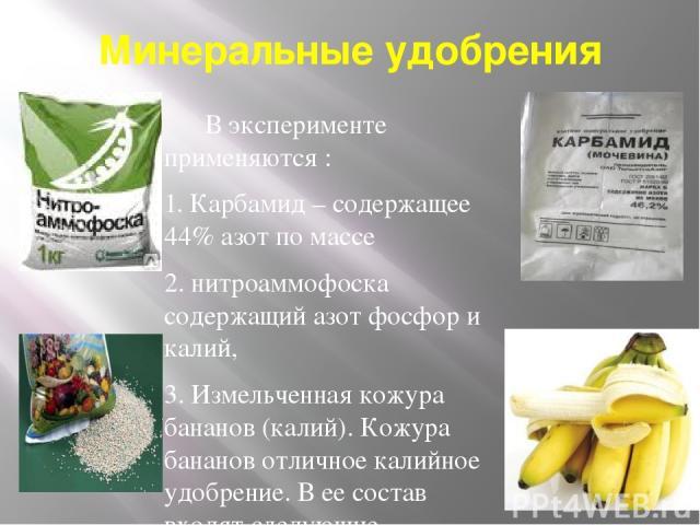 Минеральные удобрения В эксперименте применяются : 1. Карбамид – содержащее 44% азот по массе 2. нитроаммофоска содержащий азот фосфор и калий, 3. Измельченная кожура бананов (калий). Кожура бананов отличное калийное удобрение. В ее состав входят сл…