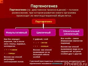 Партеногенез Партеногенез (гр. девственное происхождение) – половое размножение,