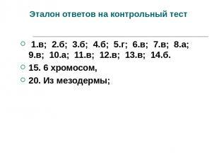Эталон ответов на контрольный тест 1.в; 2.б; 3.б; 4.б; 5.г; 6.в; 7.в; 8.а; 9.в;