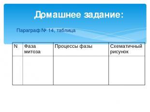 Домашнее задание: Параграф № 14, таблица N Фаза митоза Процессы фазы Схематичный