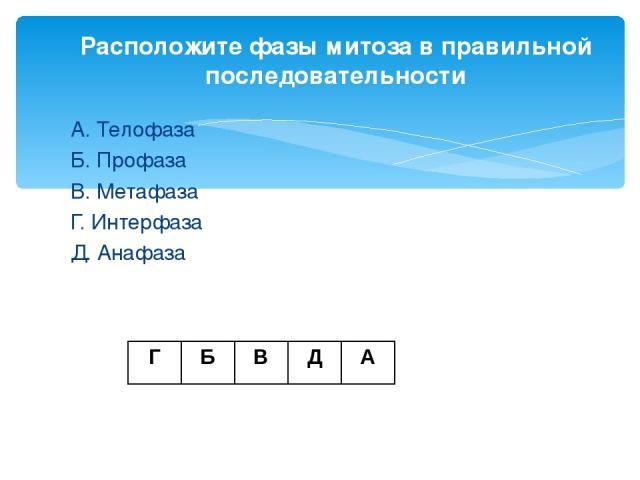Расположите фазы митоза в правильной последовательности А. Телофаза Б. Профаза В. Метафаза Г. Интерфаза Д. Анафаза Г Б В Д А