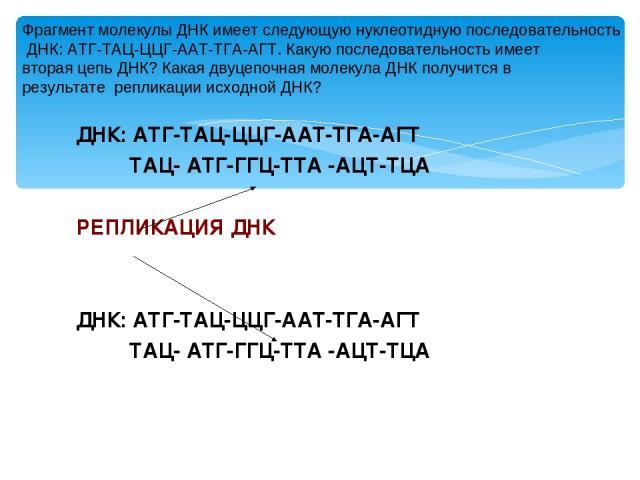 ДНК: АТГ-ТАЦ-ЦЦГ-ААТ-ТГА-АГТ ТАЦ- АТГ-ГГЦ-ТТА -АЦТ-ТЦА РЕПЛИКАЦИЯ ДНК ДНК: АТГ-ТАЦ-ЦЦГ-ААТ-ТГА-АГТ ТАЦ- АТГ-ГГЦ-ТТА -АЦТ-ТЦА Фрагмент молекулы ДНК имеет следующую нуклеотидную последовательность ДНК: АТГ-ТАЦ-ЦЦГ-ААТ-ТГА-АГТ. Какую последовательность…