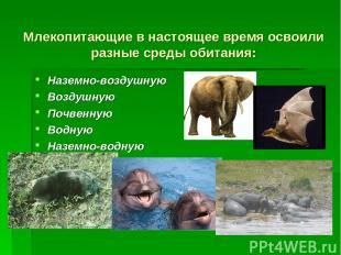 Млекопитающие в настоящее время освоили разные среды обитания: Наземно-воздушную