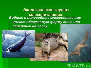 Экологические группы млекопитающих: Водные и полуводные млекопитающие имеют обте