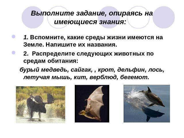 Выполните задание, опираясь на имеющиеся знания: 1. Вспомните, какие среды жизни имеются на Земле. Напишите их названия. 2. Распределите следующих животных по средам обитания: бурый медведь, сайгак, , крот, дельфин, лось, летучая мышь, кит, верблюд,…