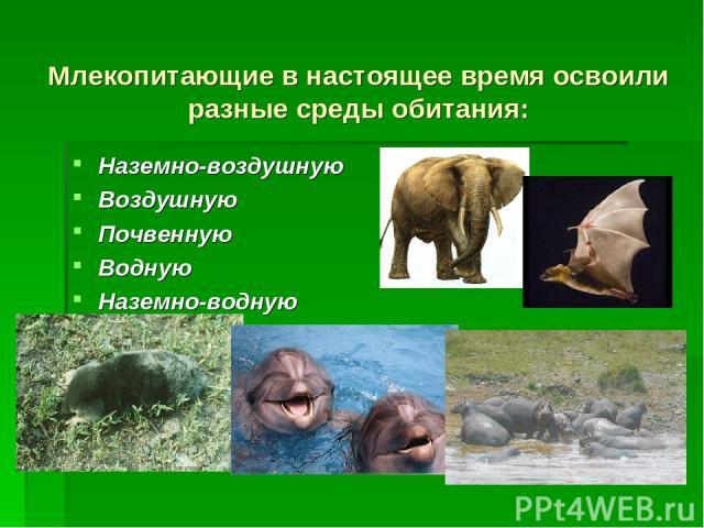 Млекопитающие в настоящее время освоили разные среды обитания: Наземно-воздушную Воздушную Почвенную Водную Наземно-водную