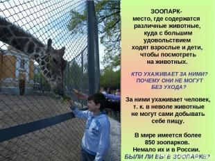 За ними ухаживает человек, т. к. в неволе животные не могут сами добывать себе п