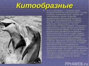 Китообразные Киты и дельфины, — морские звери, которые полностью утратили связь