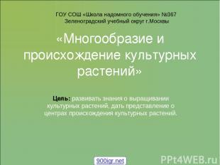 «Многообразие и происхождение культурных растений» Цель: развивать знания о выра