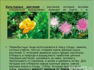 Культурные растения - растения, которые человек специально выращивает, выводит и
