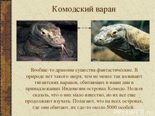 Комодский варан Вообще-то драконы существа фантастические. В природе нет такого